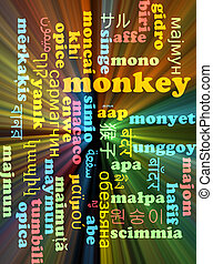 Monkey multilanguage wordcloud background concept glowing -...