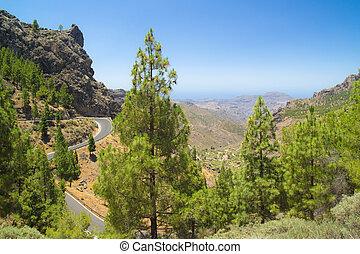 Inland Gran Canaria - Inland Central Gran Canaria, view...