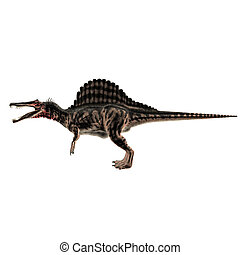 Spinosaurus isolated on white background