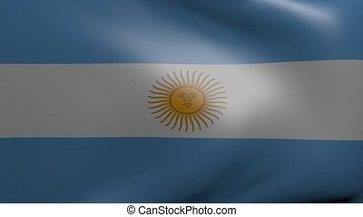 argentina strong wind flag