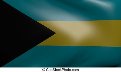 bahamas strong wind flag