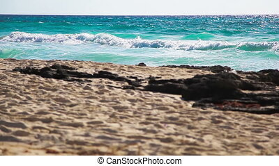 Sea Waves - The waves rolled on the sandy shore of the wild...