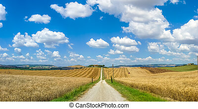 Scenic Tuscany landscape with rolling hills in Val d'Orcia, Italy