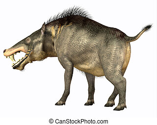 Entelodon Omnivore - Entelodon was an omnivorous pig that...