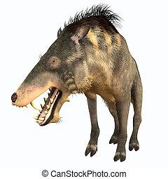 Entelodon Terminator Pig - Entelodon was an omnivorous pig...