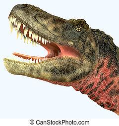 Tarbosaurus Dinosaur Head - Tarbosaurus was a carnivorous...