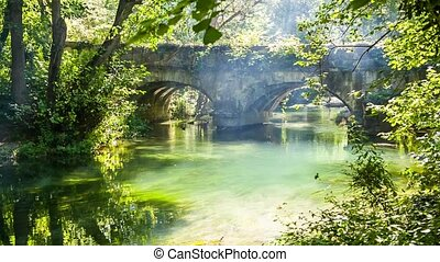 Old Bridge In Green Forest With Flowing River