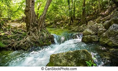 Rapid Mountain River Flowing Among Rocks In Green Forest -...