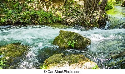 Rapid Mountain River Flowing Among Mossy Rocks And Tree...