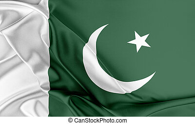 Pakistan Flag. Flag with a beautiful glossy silk texture.