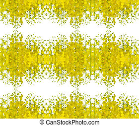 Cassia fistula seamless isolated on white background