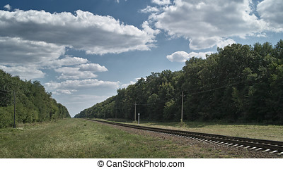 Railroad line in summer woodland