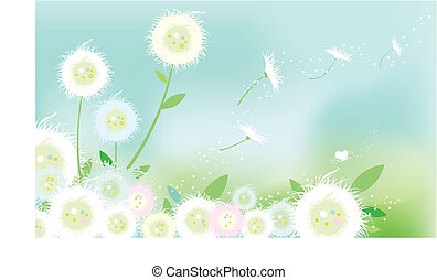 dandelion - the dandelion background