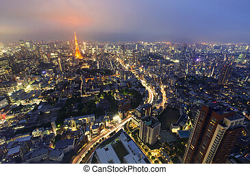 Tokyo from above with Tokyo Tower in the background at night