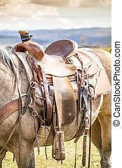 cavalo, sela, ligado, a, fazenda,
