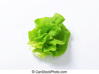 Fresh lettuce - Butterhead - Also known as Boston or Bibb...
