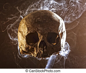 toxic place  - ancient skull bone in a smoke background