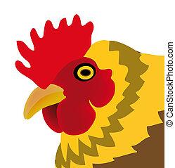 galinha, isolado, branca, fundo
