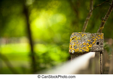 Stone fence and blurred forest background - Stone fence and...