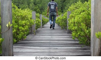 Mangrove forest with wood Walk way in Rayong at Thailand