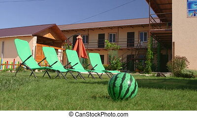 Backyard patio area with sun loungers at small family run...