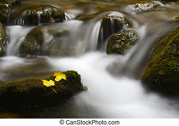 Mountainstream with autumn leave and slow shutter speed