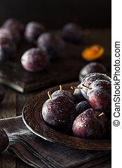 Organic Ripe Purple Prune Plums Ready to Eat