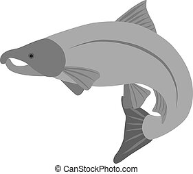 Coho Salmon Grayscale Illustration - Coho Salmon Fish in...
