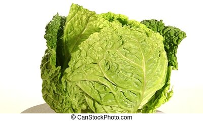 savoy cabbage on white background