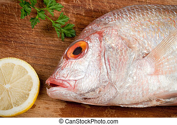 Dorade, gilthead, sparus aurata - Fish dorade, gilthead,...