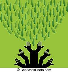 care green