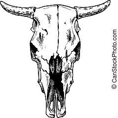 bulls skull - Vector illustration of cow skull stylized as...