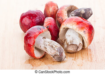 Fresh Rosy Russula fungi on wooden plate - fresh red Rosy...