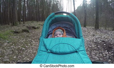 baby carriage forest - Parent push curious newborn baby...