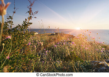 Sea of Azov desert coast - Sunset. Sea of Azov desert coast...