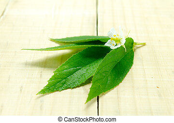 White flowers leaf on the wood table