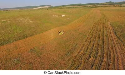 AERIAL VIEW. The mechanical harvester harvests crops....