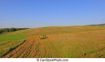 AERIAL VIEW Working Harvesting Combine in the Field of Wheat...
