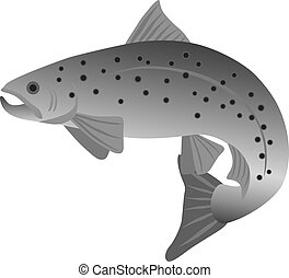 Brook Trout Grayscale Illustration - Brook Trout Fish in...