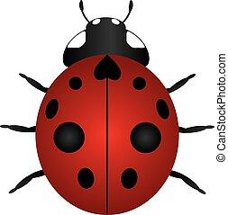 Red Ladybug Color Illustration - Red Nine Spotted Laybug...