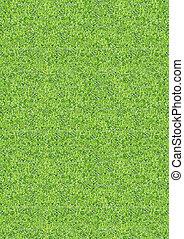 Vertical green grass texture backgr