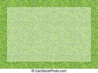 Green grass texture background bord