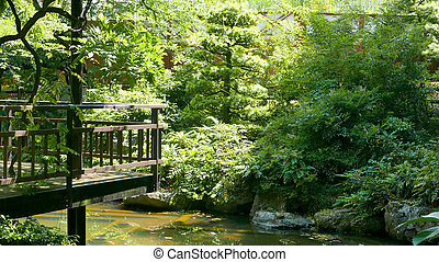 Japanese culture backyard - Green plants in Japanese culture...