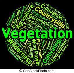 Vegetation Word Indicates Plant Life And Botany - Vegetation...