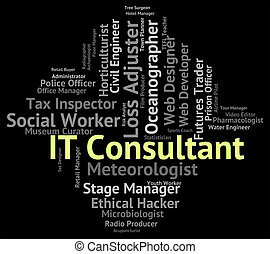 It Consultant Indicates Information Technology And Advisers