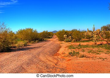 Dirt road to nowhere - Dirt road leading off with Saguaro...