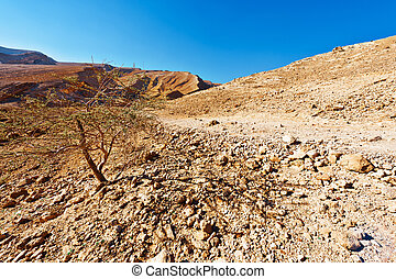 Negev - Rocky Hills of the Negev Desert in Israel