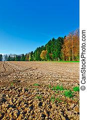 Plowed Fields Framed by Forest in Switzerland