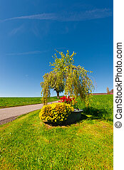 Flowerbed Near the Road Leading to the Farm House in the...