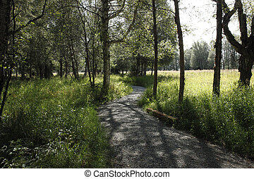 Estuary Path - Path through meadows and trees bordering an...